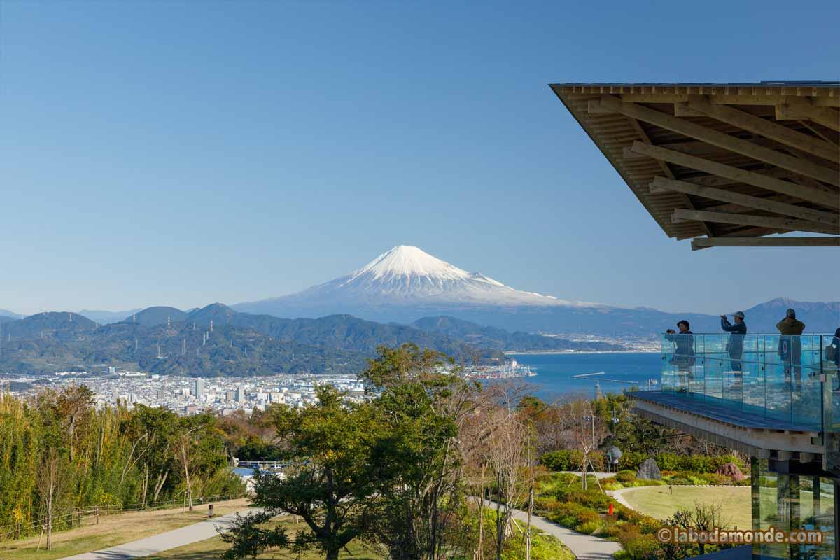 展望台+富士山